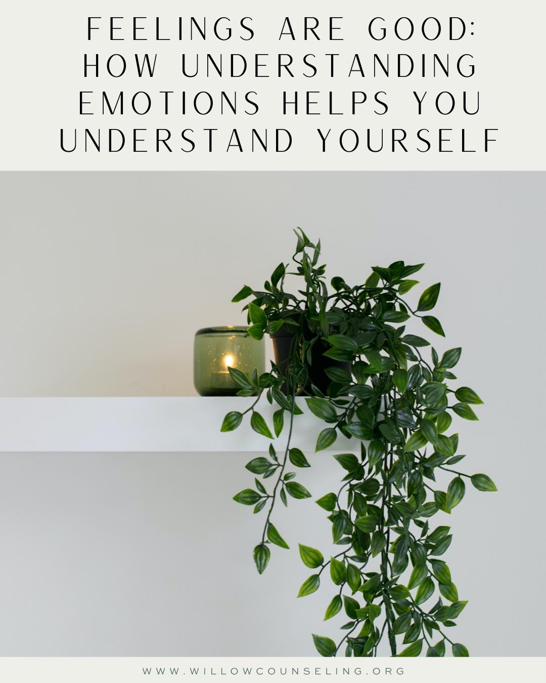 Feelings Are Good: How Understanding Emotions Helps You Understand Yourself